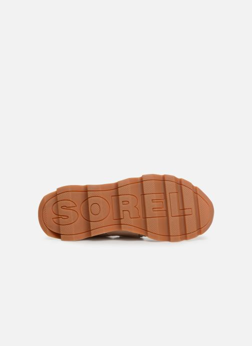 Trainers Sorel Kinetic Sneak Beige view from above
