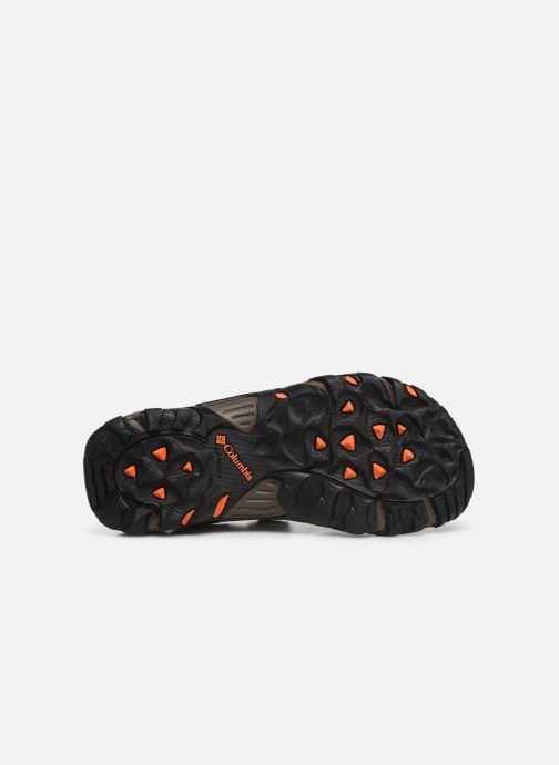 Sandales et nu-pieds Columbia Santiam™ 2 Strap Marron vue haut