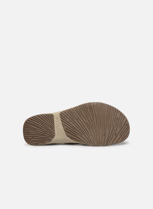 Sandali e scarpe aperte Columbia Solana™ Marrone immagine dall'alto