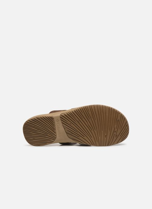 Mules & clogs Columbia Solana™ Slide Brown view from above