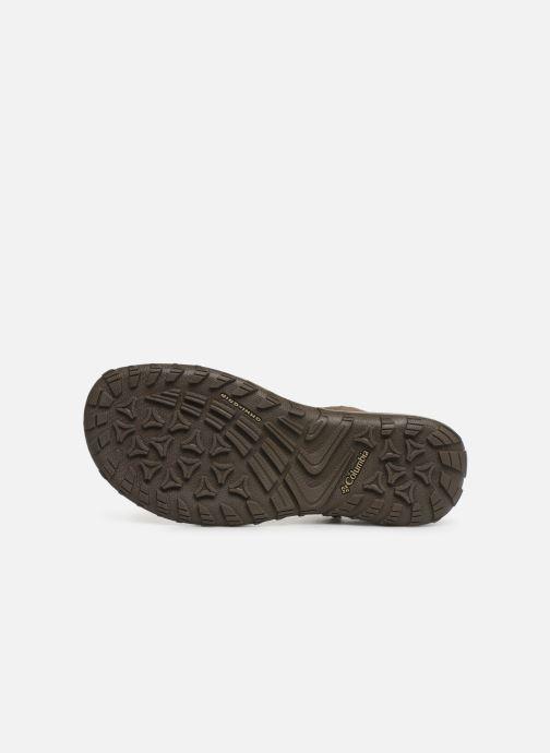 Sandales et nu-pieds Columbia Santiam™ Marron vue haut