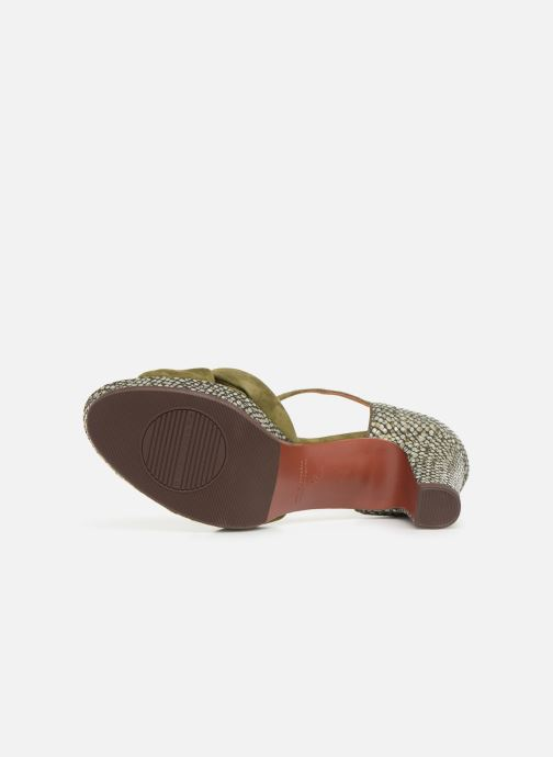 Sandals Chie Mihara Naira Green view from above
