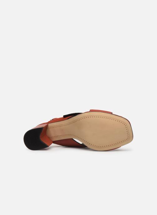 Sandali e scarpe aperte Bruno Premi BW0702N Rosso immagine dall'alto