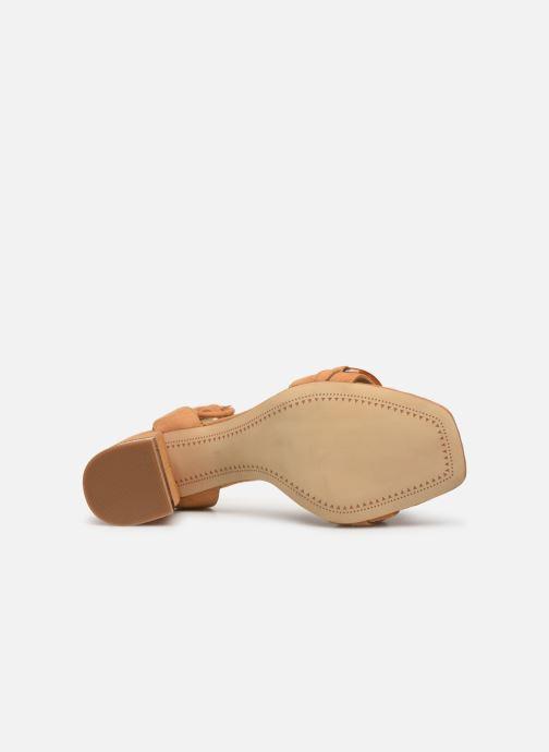 Sandali e scarpe aperte Bruno Premi BW1801X Marrone immagine dall'alto