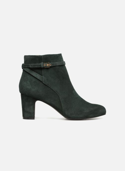 Boots en enkellaarsjes Monoprix Femme BOOTS TALON ET BOUCLE Groen achterkant