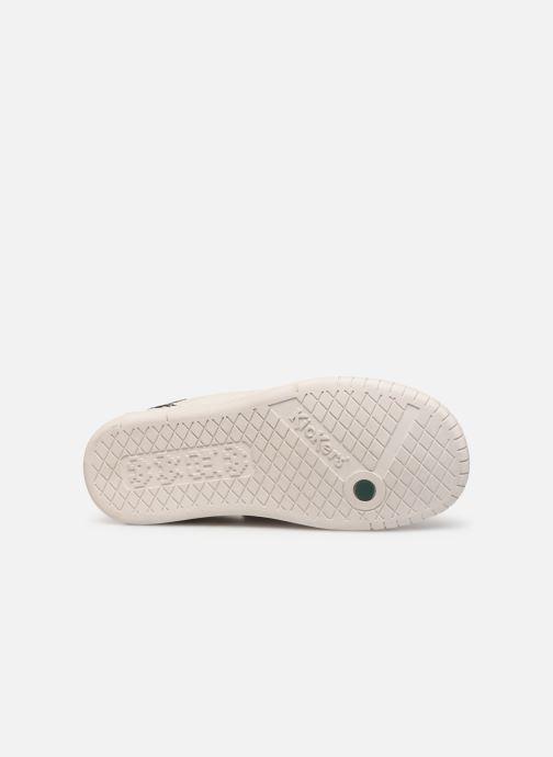 Sneakers Kickers Winder Wit boven