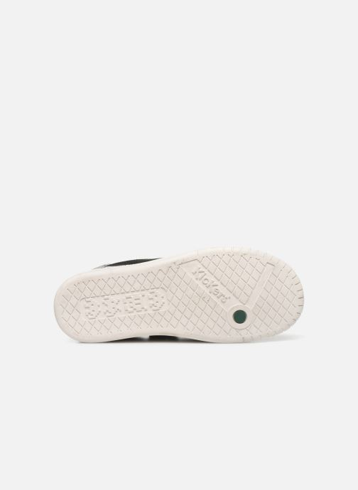 Sneakers Kickers Winder Sort se foroven