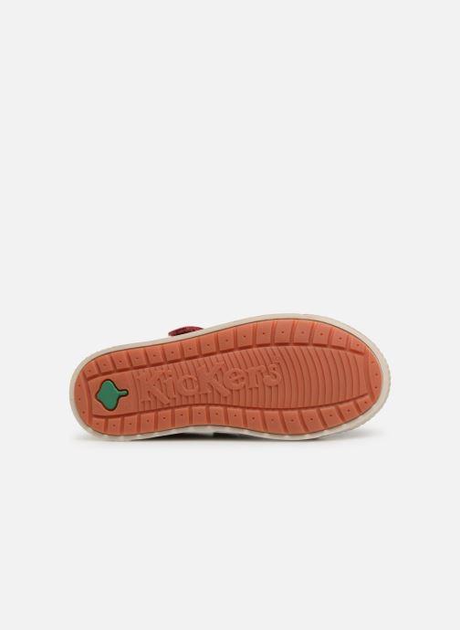 Sneakers Kickers Zhou Blauw boven