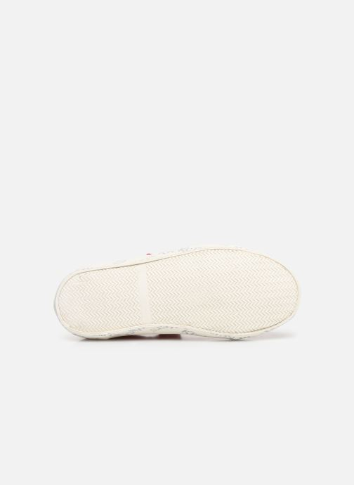 Sneakers Kickers Gody Pink se foroven