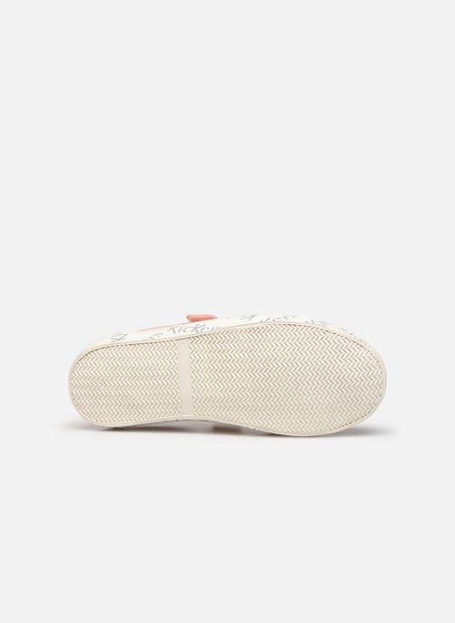 Sneakers Kickers Gody Roze boven