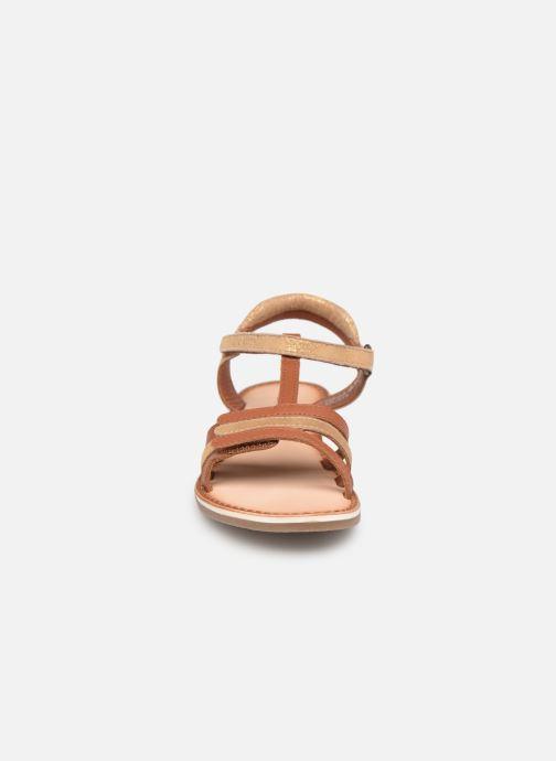 Sandales et nu-pieds Kickers Diamanto Marron vue portées chaussures