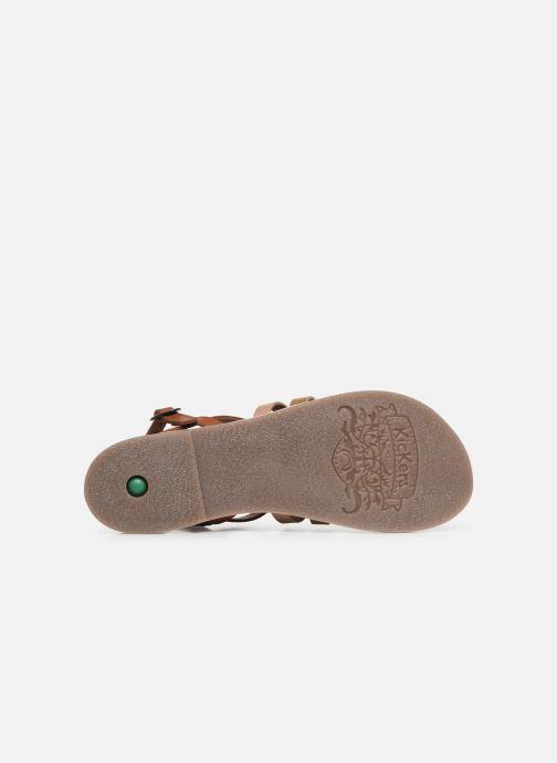 Sandalen Kickers Dixon Bruin boven