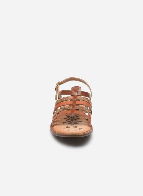 Sandales et nu-pieds Kickers Dixon Marron vue portées chaussures