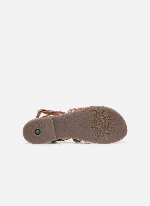 Sandali e scarpe aperte Kickers Dixon Marrone immagine dall'alto