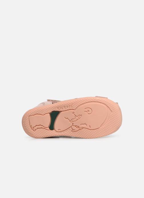 Sandalen Kickers Bigflo rosa ansicht von oben