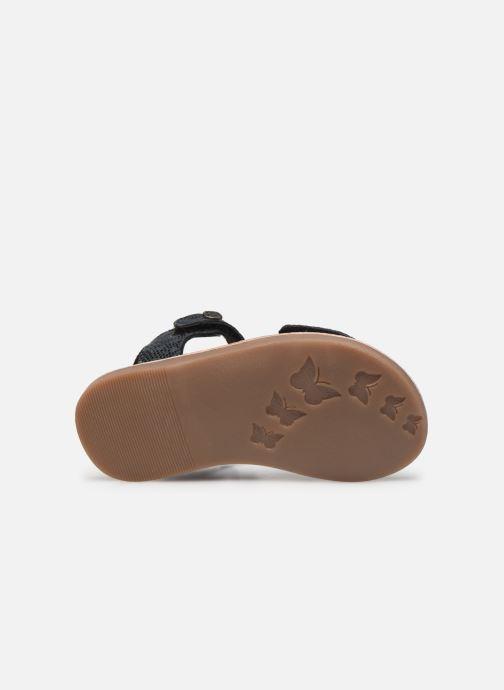 Sandales et nu-pieds Kickers Divimoi Noir vue haut
