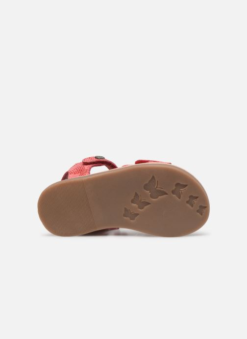 Sandales et nu-pieds Kickers Divimoi Rose vue haut