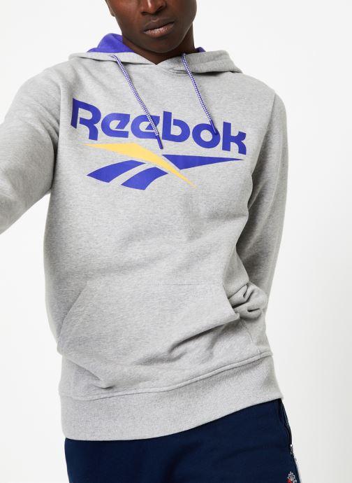Vêtements Reebok CL V OTH Gris vue détail/paire