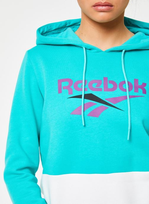 Vêtements Reebok CL V P Hoodie Bleu vue face