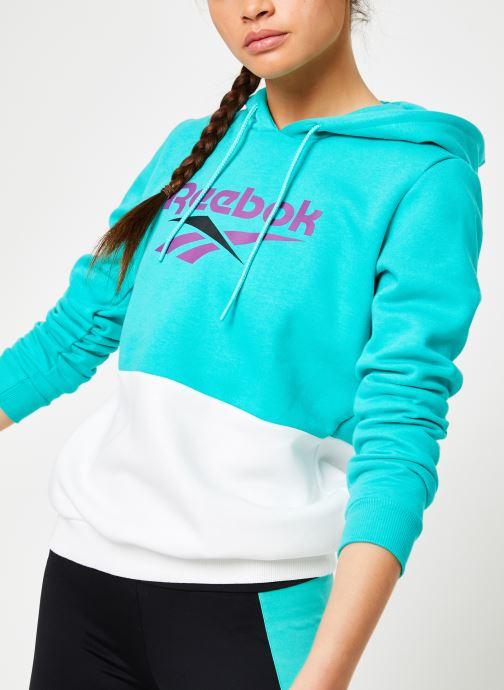 Vêtements Reebok CL V P Hoodie Bleu vue détail/paire