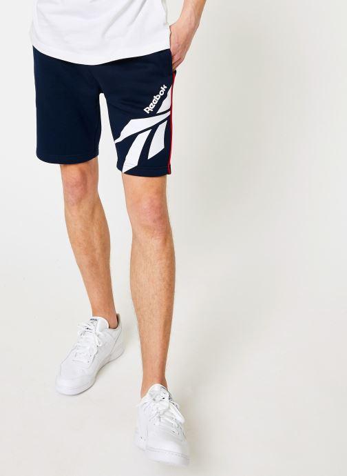 Vêtements Reebok CL V P FL Shorts Bleu vue détail/paire