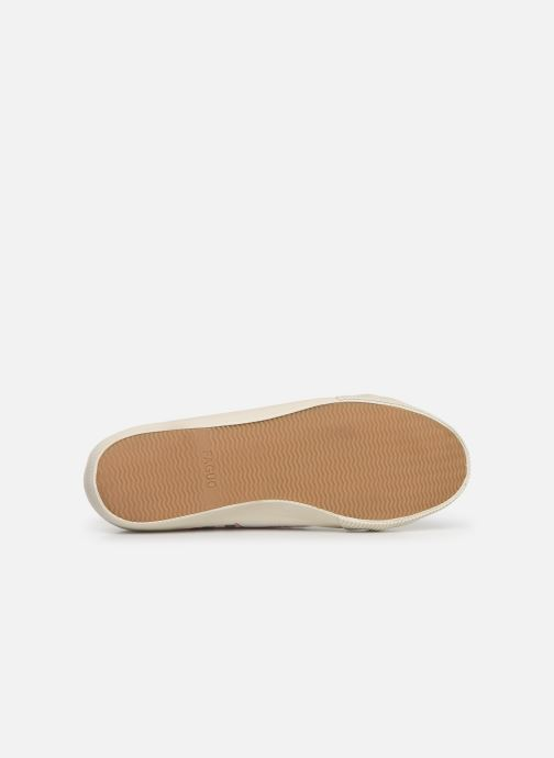 Trainers Faguo Avocado Cotton C White view from above