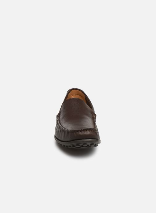 Loafers Clarks HAMILTON FREE Brown model view