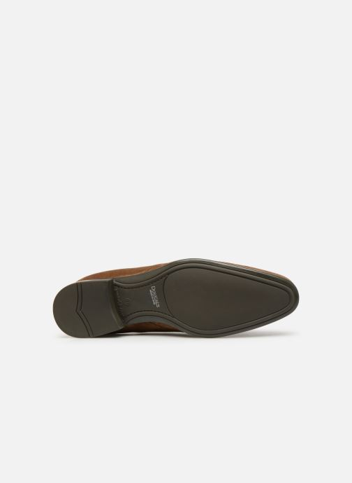 Boots en enkellaarsjes Doucal's OMAR2 Bruin boven