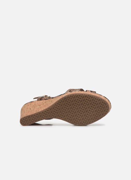 Sandales et nu-pieds Dune London KOALA Marron vue haut