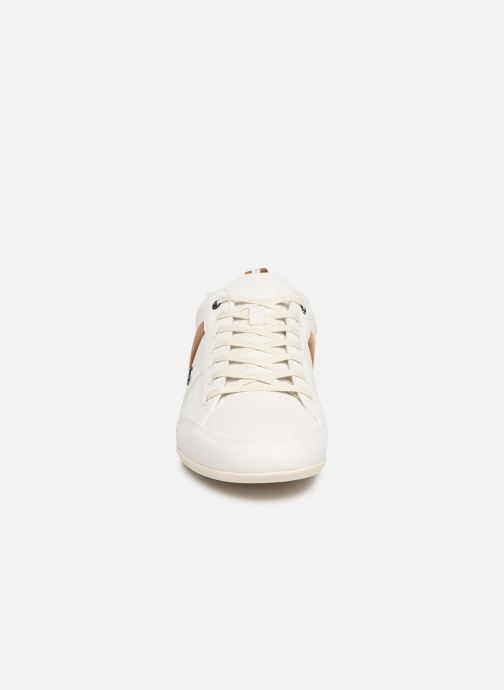 Trainers Lacoste Chaymon 119 5 Cma White model view