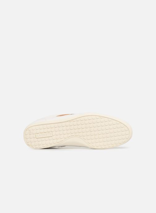 Trainers Lacoste Chaymon 119 5 Cma White view from above