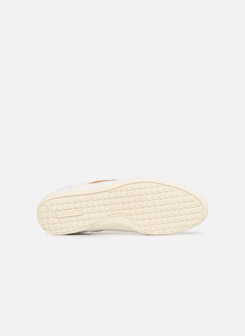 Baskets Lacoste Chaymon 119 5 Cma Blanc vue haut