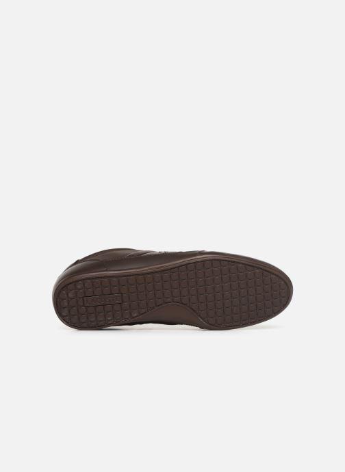 Sneaker Lacoste Chaymon Bl 1 Cma braun ansicht von oben