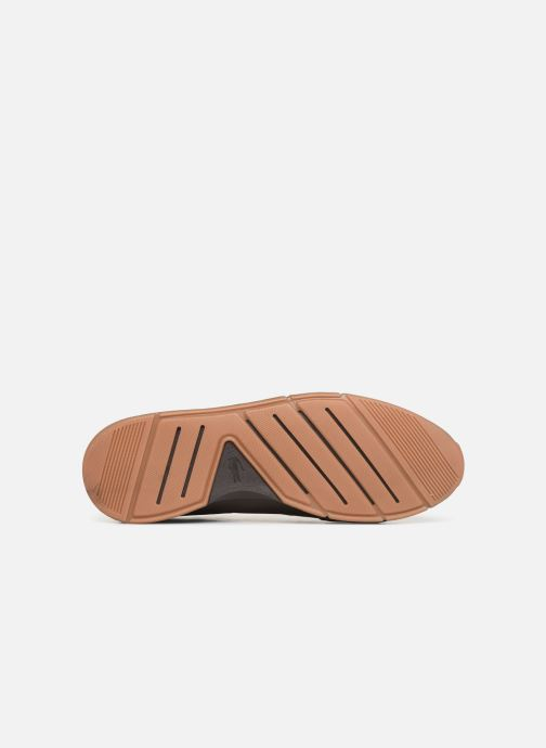 Trainers Lacoste Menerva 119 4 Cma Brown view from above