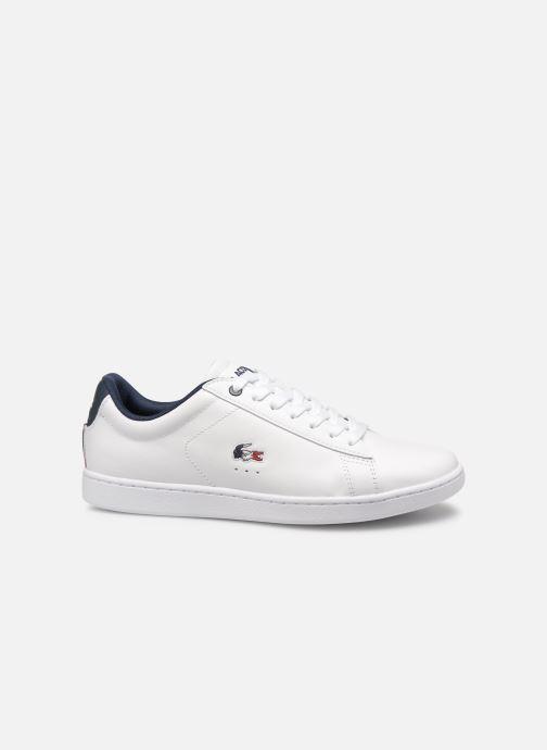 Sneaker Lacoste Carnaby Evo 119 7 Sfa weiß ansicht von hinten