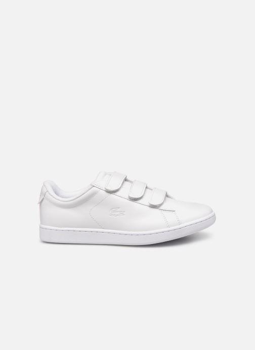 Sneaker Lacoste Carnaby Evo Strap1191Sfa weiß ansicht von hinten