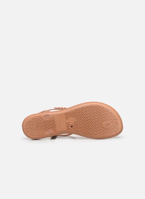 Sandales et nu-pieds Ipanema Class Pop Sandal Marron vue haut