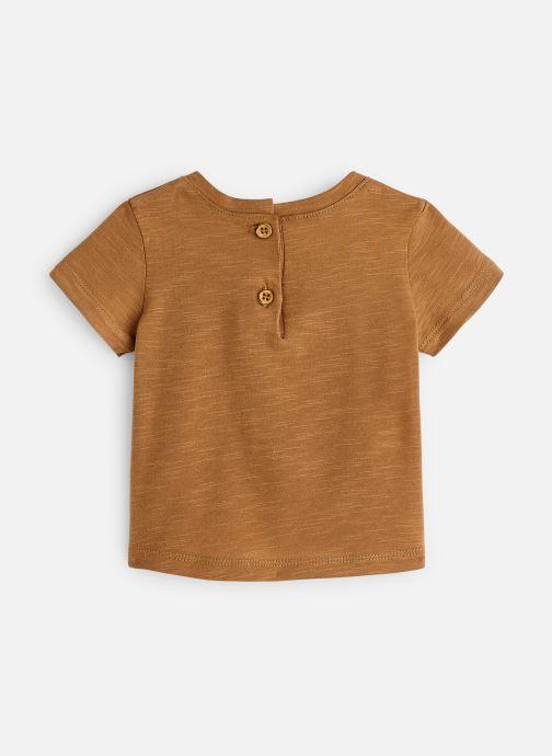 Vêtements Absorba 9N10212 Marron vue bas / vue portée sac