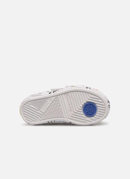 Baskets Gioseppo ACIREALE Blanc vue haut