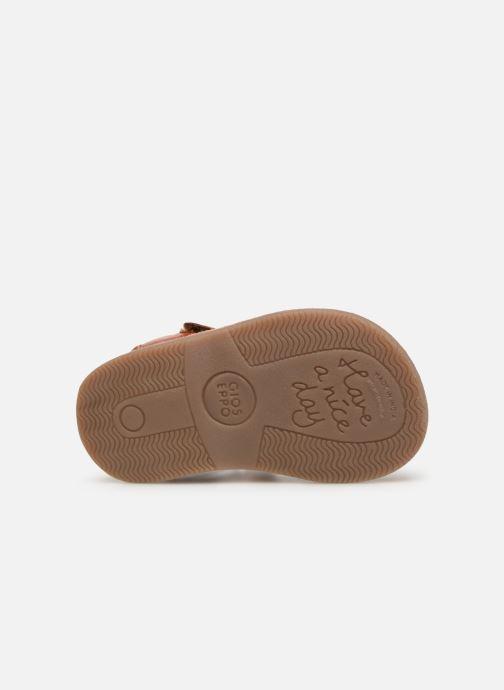 Sandales et nu-pieds Gioseppo ODERZO Marron vue haut