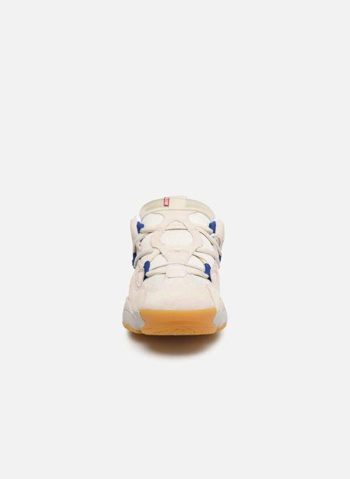 Sneakers Globe Option Evo Beige modello indossato