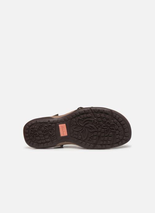 Sandales et nu-pieds Skechers Reggae Slim Marron vue haut