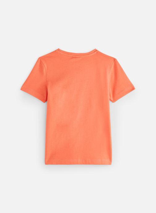 Abbigliamento 3 Pommes 3N10005 Arancione immagine dal basso