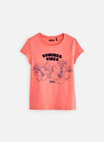 Vêtements Accessoires XN10272