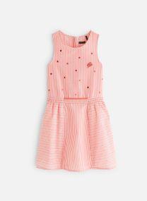 Vêtements Accessoires XN31072