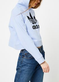 Kleding Accessoires Cropped Hoodie