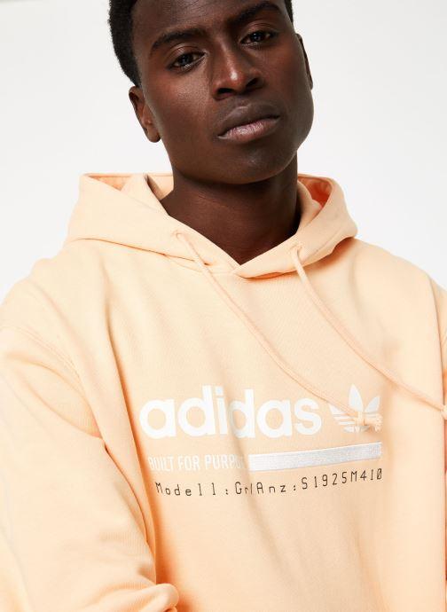 Kleding adidas originals Grp Oth Hoody Beige voorkant