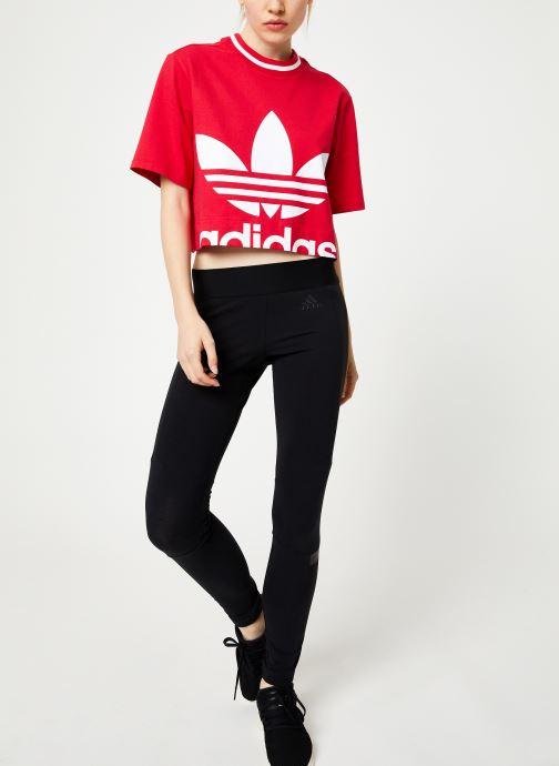 Vêtements adidas originals Cropped Tee Rose vue bas / vue portée sac