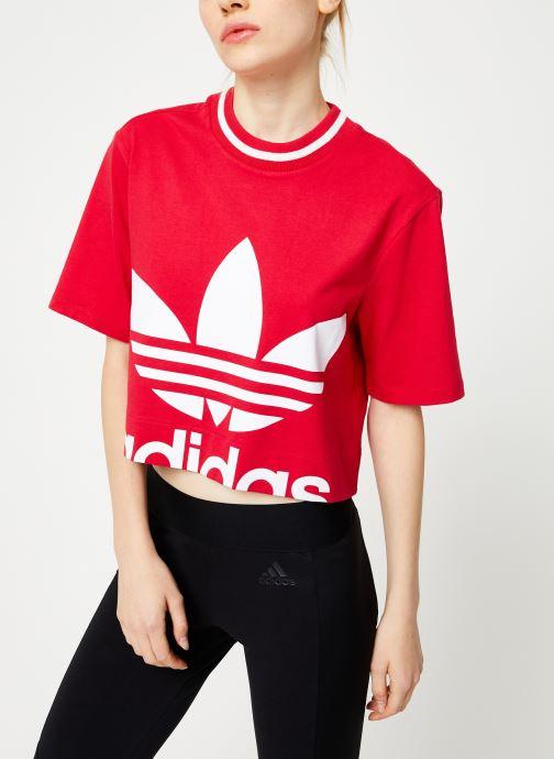 Vêtements adidas originals Cropped Tee Rose vue droite