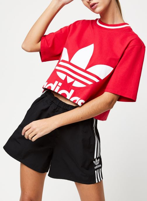 Vêtements adidas originals Cropped Tee Rose vue détail/paire